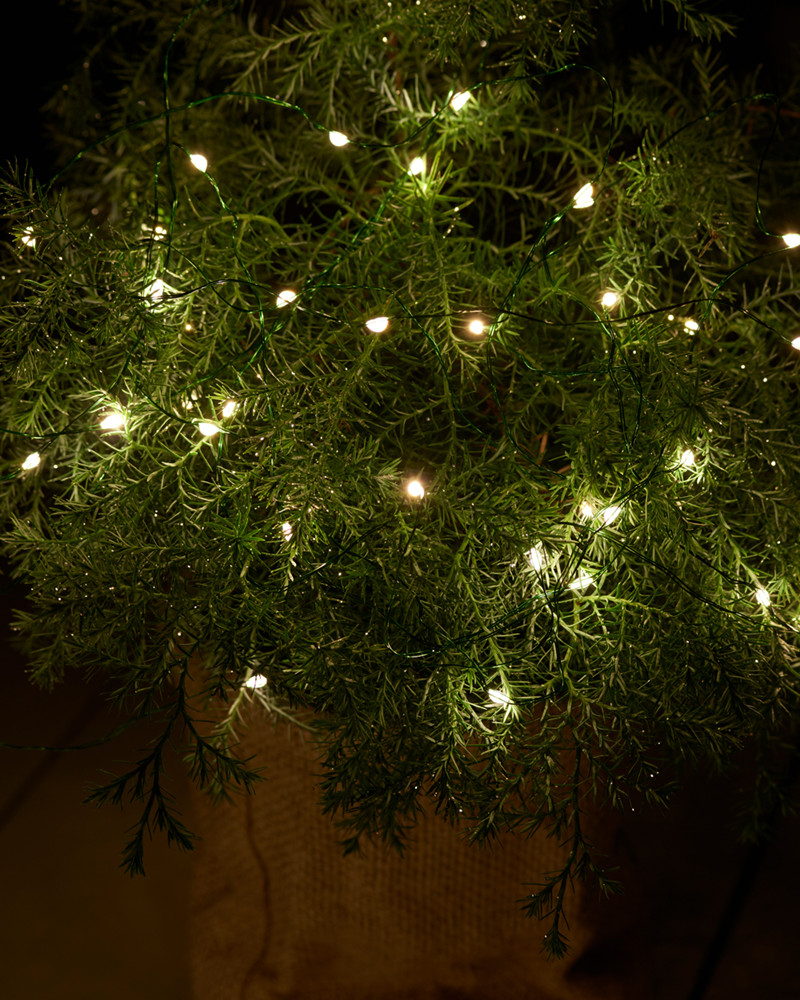 bead lights with green wire