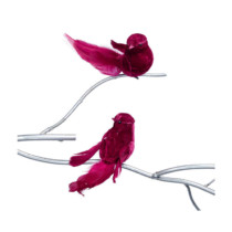 red-feather-clip-birds-purely-christmas-54110