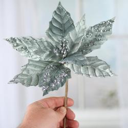 hand holding mint green poinsettia