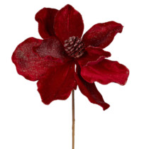red magnolia stem with pinecone centre