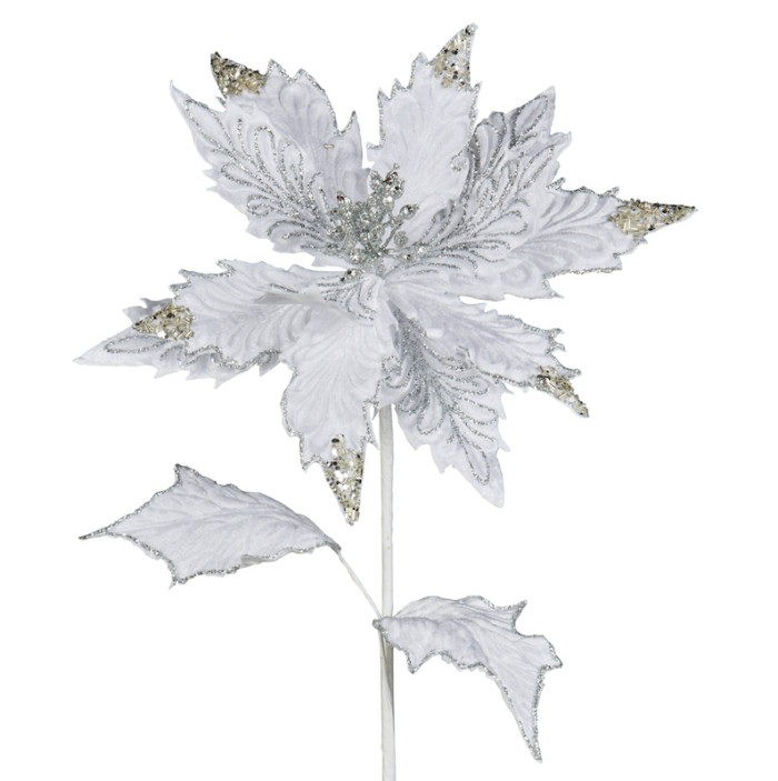 white poinsettia stem