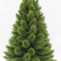60cm pitch pine small christmas tree